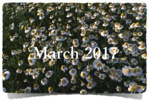 3月セミナー